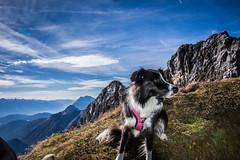 Karwendel_9928.jpg (Comperia) Tags: bege berg karwendel landschaft wandern