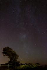 Voie lacte Cap gris nez (Arahnel) Tags: voie lacte etoiles nuit espaces cosmos milky way