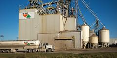 Southern Manitoba (Keith Levit) Tags: carman manitoba canada ca