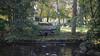 Campo de San Francisco (Jusotil_1943) Tags: 16112016a cisnes patos agua parque oviedo caseta
