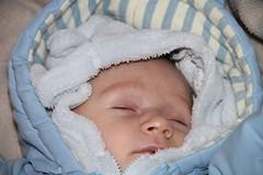 IMG_6410 (ecavliptovskyjan) Tags: krst 2011