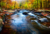 Fall Scenic of a Rocky River, New Jersey (George Oze) Tags: flow flowing hacklebarneystatepark longvalley autumn beautyinnature blackriver boulders colorful creek daytime deciduousforest dramy fall fineartphotography foggy foliage forest gorge horizontal landscape morriscounty motionblur nature newjersey nobody northamerica outdoors recreation redleaves river riversandcreeks rocky rockycreek scenic season seasons travel usa valley water unitedstatesofamerica us