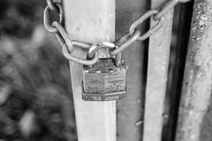 Chained (bigalid) Tags: film 35mm pentax p30t ilford xp2 c41 bw september 2016 lock chain