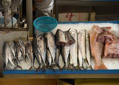 Tekka Market, Singapore (olyaterekhova) Tags: singapore little india market street life fish food