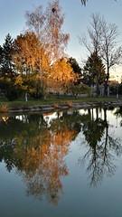 Jenec' lake