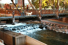 Foot Bridge (pls47) Tags: falls dog dogwalker rivets iron shadows pls47 pedestrian platteriver bridge colorado denver