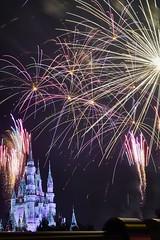 One short day in The Magic Kingdom (Tom Slate) Tags: fireworks disney magickingdom waltdisneyworld nighttime longexposure wishes castle cinderellacastle
