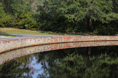 Curves and Reflections (Gabriel FW Koch) Tags: landscape scenic pond wall bricks trees park garden beautiful grass reflections canon eos depthoffield dof telephoto lseries