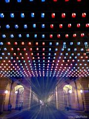Tappeto volante, piazza Palazzo di città, Torino. Luci d'artista #lucidartista #artisticlights #turin #magiclight #tappetovolante #piazzapalazzodicittà #prospettiva #perspective #cisco@photo (Ciscobolo) Tags: turin piazzapalazzodicittà magiclight lucidartista cisco perspective tappetovolante artisticlights prospettiva