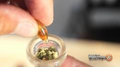 TetraLabs Pure Gold Showcase (kmobocunib1970) Tags: 420 cannabis clinic cola collective concentrate delta dispensary edible gear hash hemp hybrid indica marijuana medical sativa thc weedmaps