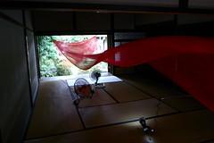 silk dragon (troutfactory) Tags: silk installation artwork floating beautiful red sasayamaartfestival sasayama artfestival art 篠山市 関西 kansai 日本 japan ricohgrd2 digital