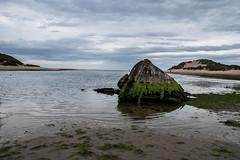 echos (pamelaadam) Tags: newburgh forviesands aberdeenshire scotland june summer 2016 sea boat digital visions meetup fotolog thebiggestgroup