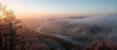 Niederwald (M. Z.) Tags: germany rüdesheim rhein nahe hessen landscape fluss river sunrise early travel enjoy