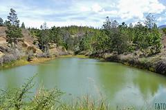 Pozo Verde (Tato Avila) Tags: colombia boyac villadeleyva pozosazules naturaleza colores clido cielos montaas arboles vida vegetal bosquedepino