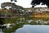 Gulshan lake (Francisco Anzola) Tags: dhaka bangladesh gulshan gulshanlake lake water shore trees reflection