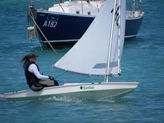 094-DSCN9423 (eric15) Tags: sea beach water race cat for boat eva surf sailing wind offshore sailors luna aruba international dash sail regatta sailor optimist sunfish oranjestad surfside