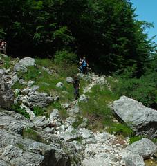 Camminare per i sentieri (SDB79) Tags: parco natura sentiero abruzzo bosco camminare parconazionaleabruzzo