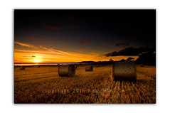 Loughries Sunset (RonnieLMills) Tags: scrabo tower strangford lough portaferry road newtownards county down northern ireland sunset orange sky hay bales farming agriculture loughries haybalestubble utvsnapper autofocus greatphotographers swingers