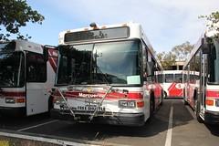 Gillig Lowfloor #3203 #3210 #3201 (busdude) Tags: stanford shuttle marguerite gillig 3210 3201 veolia lowfloor 3203 transdev