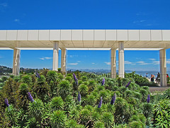 Getty Colonnade Vista (John Jardin) Tags: california blue sky people sunlight white plant green texture nature museum architecture outdoors exterior view bright columns sunny hills vista getty blooms