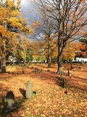 New England Autumn (mademoisellelapiquante) Tags: autumn fall cemetery leaves boston 17thcentury newengland gravestone bostonma 18thcentury