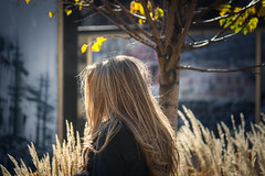 the slow death of fall (Jeff Hayward (@pointandwrite)) Tags: blondes woman hair fall autumn leaves grass nature urban outdoors
