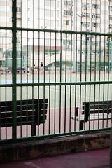 city snaps (Steve only) Tags: film 50mm voigtlander snaps seats epson fujifilm 100 konica nokton rf hexar f15 5015 11550 v750 gtx970