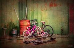 MemoryLane (delliselsa) Tags: urban stilllife oklahoma rain reflections bicycles