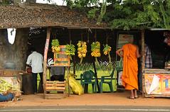 samsara thirst (amalmeemanage) Tags: studio amal sri lanka teashop buddhistmonk wildart meemanage