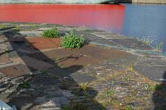 Capstan site (beqi) Tags: 2016 albertdock edinburgh history leith leithdocks stonework shadow