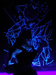 black light animals (just me julie) Tags: wolf eagle bear blacklight