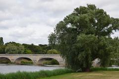 Bord de Cher (dfromonteil) Tags: cher rivire river water eau pont bridge tree arbre vert green nature paysage landscape sky clouds ciel nuages calme quiet