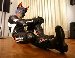 11_19_16_01_00044 (Kory / Leo Nardo) Tags: pup pupplay pupleo kory rubberdawg zentai lycra spandex suit collar dog doberman dobi tail dawg furry boots flats corset purple lace fem effeminate trans gay indoor moto motorcycle kawi kawasaki zx10r dianasie tracksuit helmet leash leather gear tattoo