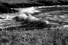 My wave! (poupette1957) Tags: art atmosphre abandoned black beach bretagne canon curious deco detail french grandangle imagesingulires sky life landscape monochrome noiretblanc nature photographie sea travel urban wave