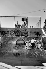 Skateboard Shrine Wall (Town Park Series), Oakland CA, Fall 2016. (j.m. gonzalez) Tags: lumixgvario olympus em5 skateboarding townparkskatepark oaklandskateboarding streetphotography highcontrastphotography oaklandhistory oaklandskatepark