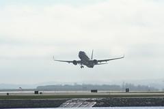 IMG_2631 (wmcgauran) Tags: kbos bos boston airport eastboston aviation airplane aircraft n917nn american americanairlines boeing 737 737800