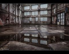 auf der Werft (geka_photo) Tags: gekaphoto lbeck schleswigholstein deutschland werft werkshalle pftzen marode marodes kulturwerftgollan