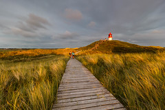 Evening - light (LarsGerritS) Tags: light golden gold leuchtturm lighthouse amrum northerngermany nordsee northsea windy wind nature outdoor