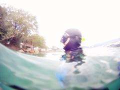 GOPR5943 (ambrogi_taubate) Tags: naturezaselvagem marinha mergulhando ubatuba sp brasil naturezamarinha fantstica apneia 10m setembro primavera 2016