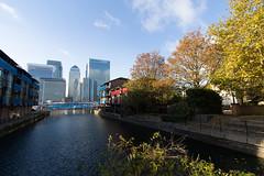Autumn on the Wharf 13th Nov (9 of 37) (johnlinford) Tags: autumn canarywharf canon canonefs1022 canoneos7d docklands e14 landscape london towerhamlets urban urbanautumn