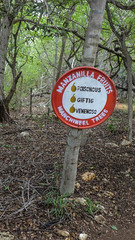 Manzanilla fruits warning sign