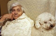 #compagnons #brothersincouch #elderly  #Mom #Birbo  #ToneSurTone #bichonfrise #bichon #ig_biella #puppy #caneMOSSO  #caneStaFERMO     #puppies #hundchen #chien #perritos #perro #cane #dog #caes #cao #cachorro  #valdengo #biella #biellese #pooch (! . Angela Lobefaro . !) Tags: instagramapp square squareformat iphoneography uploaded:by=instagram winter old smile hund chien perro perrito cagnolino portrait puppies hundchen perritos cane dog caes cao cachorro valdengo biella biellese pooch lady woman senior whitehair bichonàpoilfrisé bichonfrisé elvira natuzzi stopmoving alt
