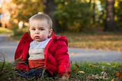 (nicolehawkins725) Tags: jack uws centralpark fall leaves redcoat