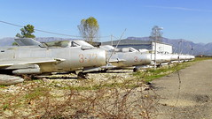 A row with retired Albanian Air Force jetfighters at Tirana Airport, Albania (sirgunho) Tags: shenyang f6 cn 7912 serial 372 7114 3304 334 3404 344 mikoyan gurevich mig19s 1304 304 7128 378 1303 303 7117 377 albanian air force stored tirana airport albania mig 19