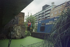 Regents canal, reed beds 9 (Tea, two sugars) Tags: film kodak sport waterproof kodaksportwaterproof singleuse lowerregentscoalition lower regents coalition expired