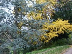 P1100785 - PARIS - parc des Buttes Chaumont (peguiparis - 5 million visits) Tags: butteschaumont parc park jardin garden paris