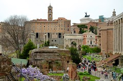 Roman Forum (Joe Shlabotnik) Tags: forum italy italia april2016 roma wisteria rome ruins 2016 afsdxvrzoomnikkor18105mmf3556ged