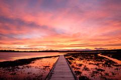 100% lucky (ajecaldwell11) Tags: reflection redsky pandorapond hawkesbay newzealand sunset napier boardwalk water ahuririestuary sky ahuriri tide clouds dusk light