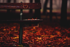Autumn (♫♪♭Enricodot ♫♪♭ an apple a day....) Tags: enricodot ilobsterit tiamo iloveyou love red leaves leaf bench orton garden cold