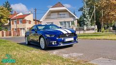 Mustang_10 (holloszsolt) Tags: ford mustang 50 outdoor vehicle sport car nanolex si3 hd autokeramia